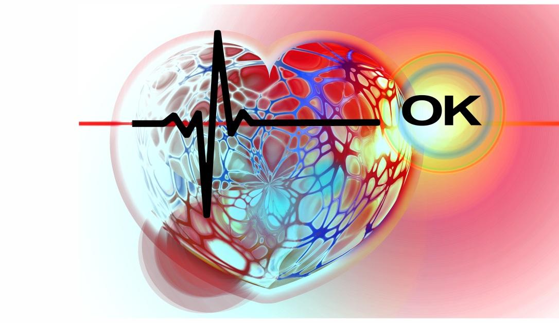 heart-665177